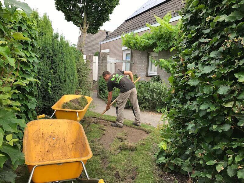 Project Eindhoven 2 Tip Top Graszoden